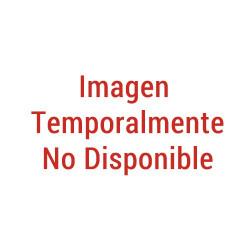 POLEA TRAPEZOIDAL PAC BUS